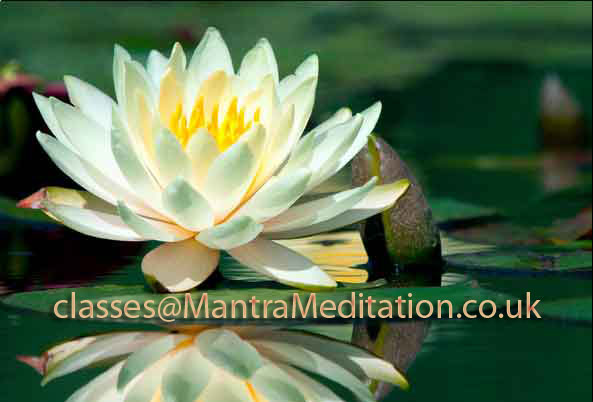 lotus mantra meditation